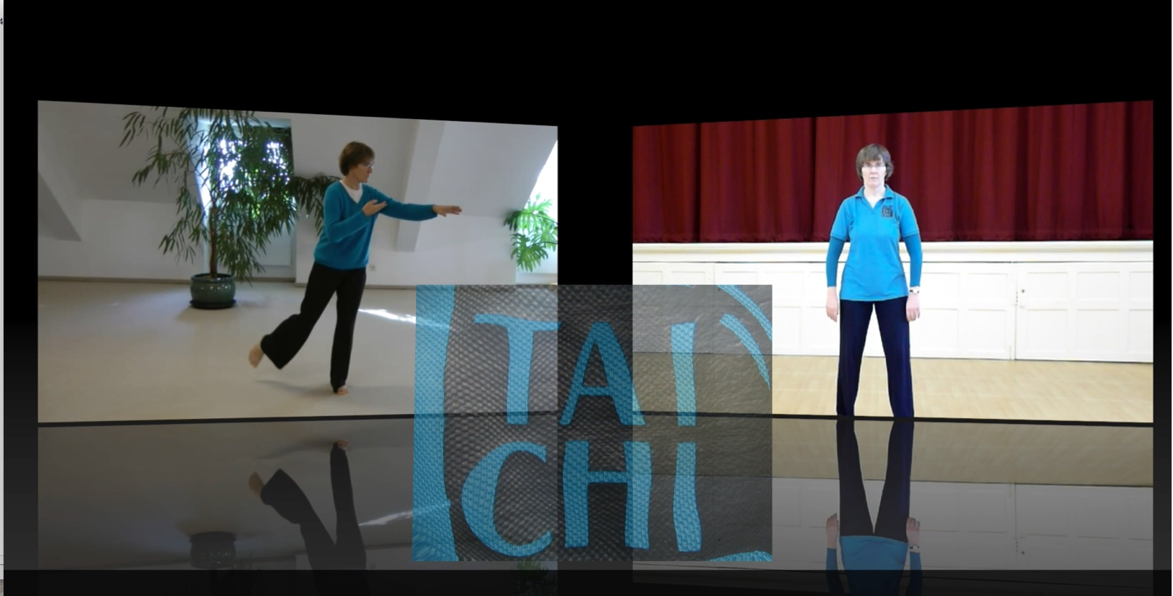 About Longwater Tai Chi video